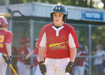 Cardinals, Kelly