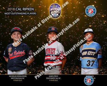 Cal Ripken World Series 2018