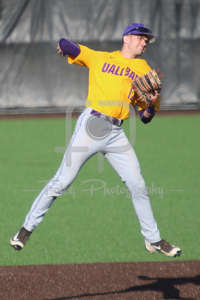 Albany Great Danes infielder Kevin Donati (12)