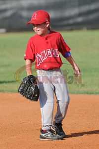 PW Angels vs White Sox 016