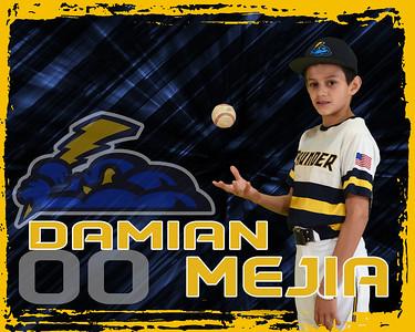 Damian Mejia E