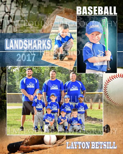 Landsharks 2017