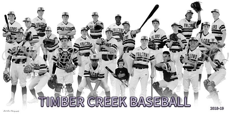 TCHS Baseball var Team 18-19 a JPG