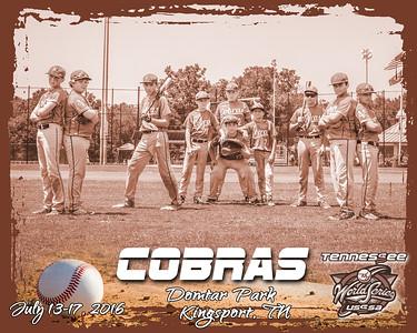 Cobras B bw