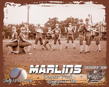 Marlins13 B bw