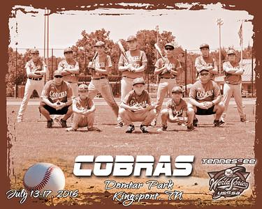Cobras A bw