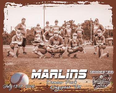 Marlins13 A bw