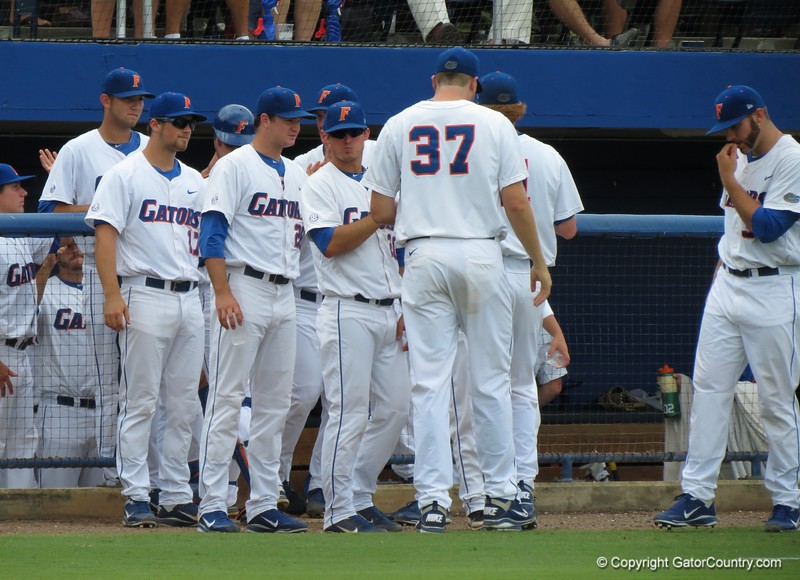 Florida players during the Gators' game against North Carolina State in Game 1 of the Gainesville Super Regional in McKethan Stadium on June 9, 2012.