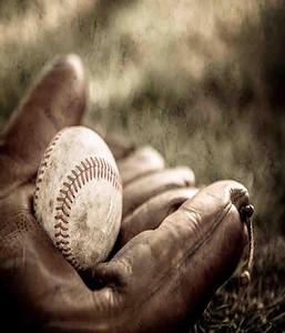 Baseball vs Grace 2017