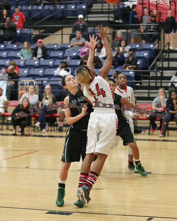 Legacy Var Girls BB vs Lake Ridge, Game 2 - 2014