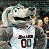 The Southern Illinois Salukis mascot stands proud during the first half of their opening round MVC tournament game.  Southern Illinois was trailing Indiana State at halftime 47-40.