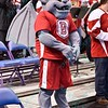 The Drake mascot at the Missouri Valley Conference, Arch Madness Tournament game two where Bradley Braves beat Drake Bulldogs by the score of 52-50