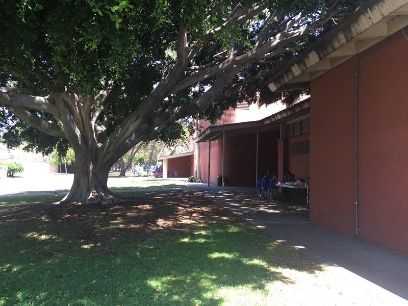 Exterior View # 7