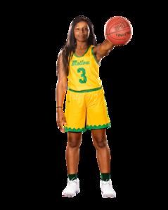 Basketball Action-0338
