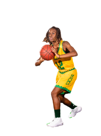Basketball cutouts-0311