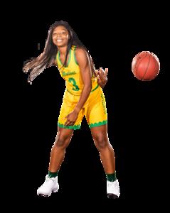 Basketball Action-0344