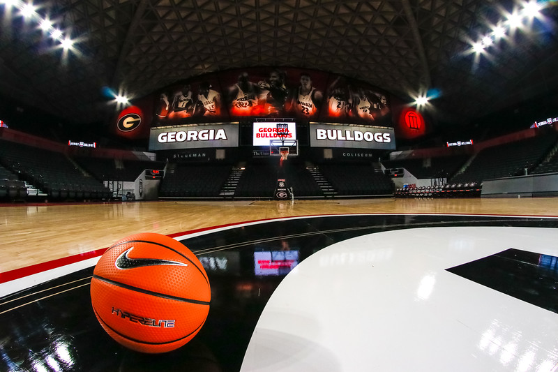UGA's newly renovated Stegeman Coliseum (Photo by Steffenie Burns / Georgia Sports Communication)