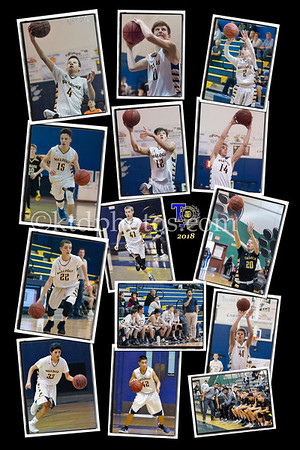 Frosh collage