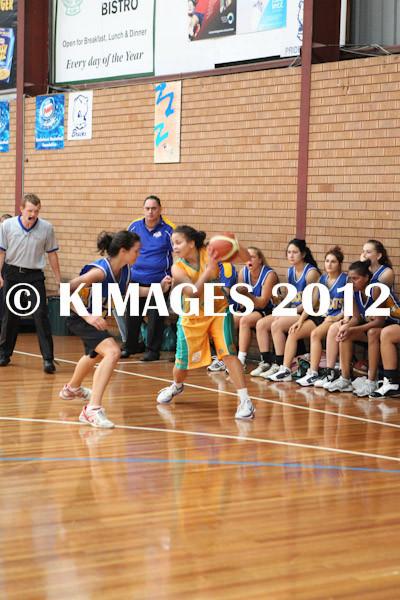 Bankstown Pre-Season 2012 - © KIMAGES 2011 - 1671