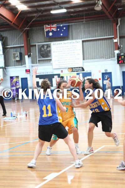 Bankstown Pre-Season 2012 - © KIMAGES 2011 - 1655