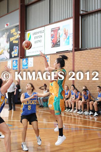 Bankstown Pre-Season 2012 - © KIMAGES 2011 - 1677