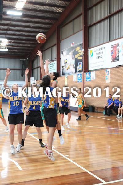 Bankstown Pre-Season 2012 - © KIMAGES 2011 - 1649