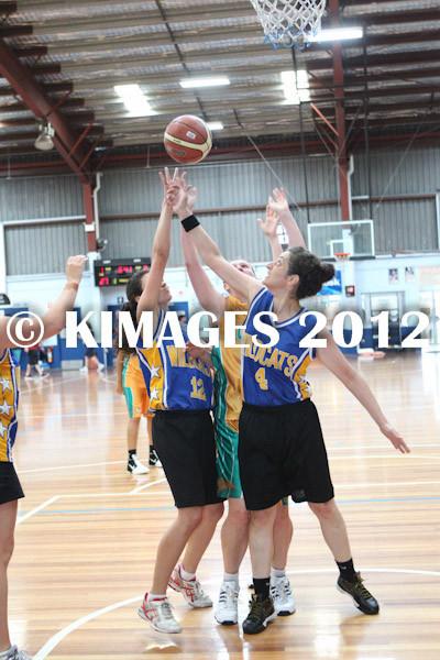 Bankstown Pre-Season 2012 - © KIMAGES 2011 - 1666