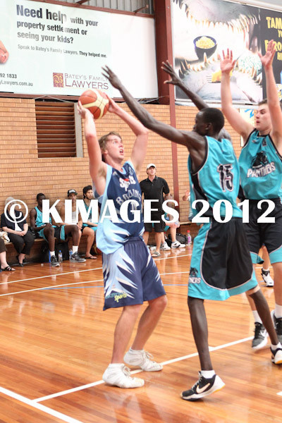 Bankstown Pre-Season 2012 - © KIMAGES 2011 - 0036