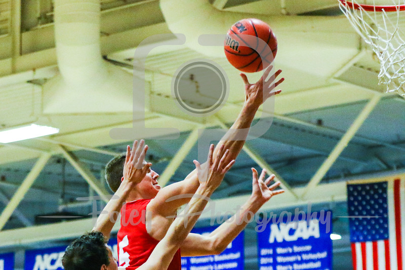 WPI Engineers guard Chris Rodgers (5) Babson College Beavers forward Nick Comenale (21)