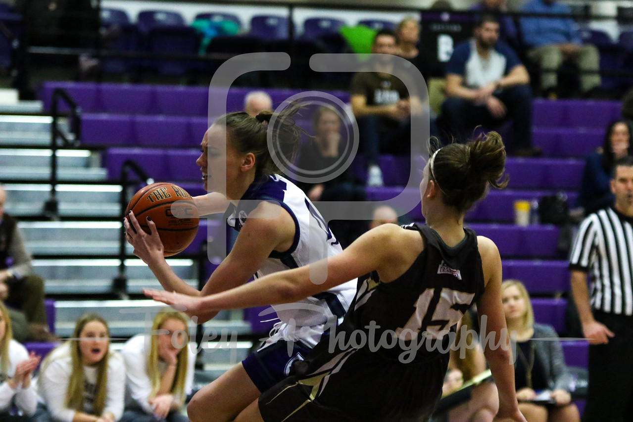 Lehigh Mountain Hawks guard Camryn Buhr (15) Holy Cross Crusaders forward Amy Hasenauer (41)