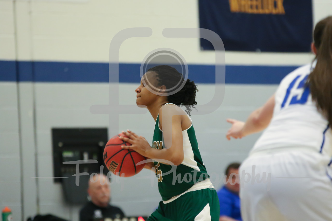 Newbury College Nighthawks Destiny Spears (25)
