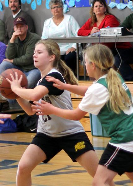 6th girls Goodrich Warriors vs Sloss Loomis Eagles 030312 (44)