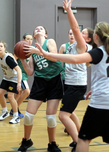 6th girls Goodrich Warriors vs Sloss Loomis Eagles 030312 (7)