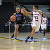 AW Girls Basketball Tuscarora vs  Princess Ann (21 of 95)
