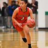 Girls Basketball Herndon vs South Lakes-6