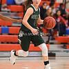 AW Girls Basketball Loudoun Valley vs Park View-12