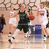 AW Girls Basketball Loudoun Valley vs Park View-15