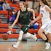 AW Girls Basketball Loudoun Valley vs Park View-16