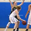AW Girls Basketball Loudoun Valley vs Park View-11