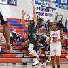 AW Girls Basketball Loudoun Valley vs Park View-13