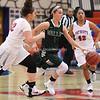 AW Girls Basketball Loudoun Valley vs Park View-7
