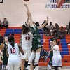 AW Girls Basketball Loudoun Valley vs Park View-10