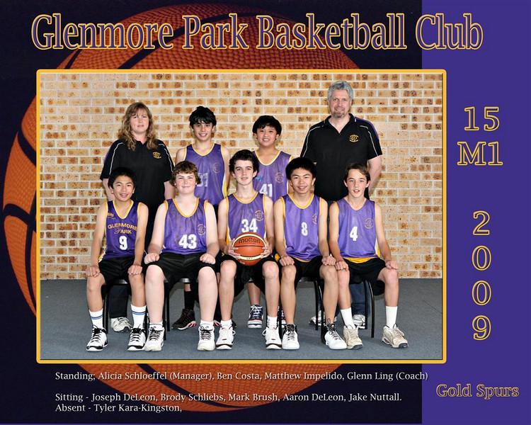15 M1 Gold Spurs copy (Large) (2)