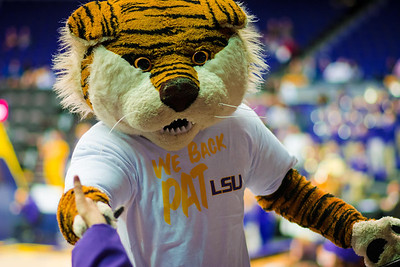 lsu_lady_bb-9406