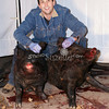 2010, 01-03 Pigs (111)