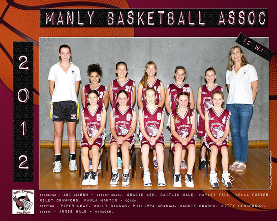 Manly Team 2012 12 W1  X11  (Large)