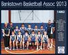 Bankstown Team 2013 14 M2 (Large)