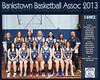 Bankstown Team 2013 16 W2 (Large)