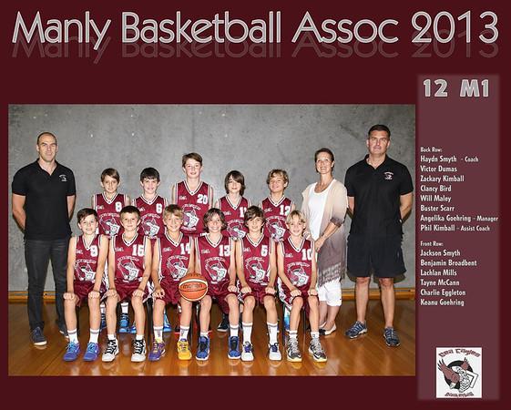 Team 2013 12 M1 (Large)