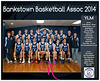Team 2014 Bankstown YLM - _WEB